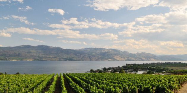 Okanagan Valley Cited In Wine Enthusiast's Top 10 List Of Travel