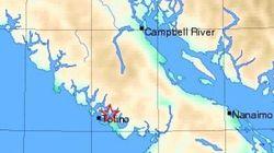 4.6-Magnitude Quake Rattles