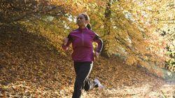 11 Fall Running