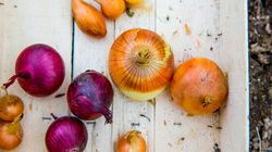 12 Immune-Boosting Foods That Fight The