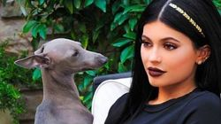 Kylie Jenner Just Started A Whole New Hair