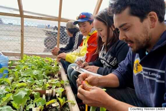 Arviat, Nunavut Young Adults Are Learning To Grow Their Own