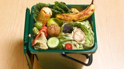 Why I Ate Food Out Of the Garbage For Dinner Last