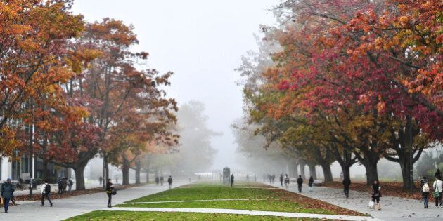 This is the way inside UBC (University of British Columbia) was coated by fog and the two sides has a lot of red maple trees as well.