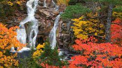 All Nova Scotians Should Support Environmental