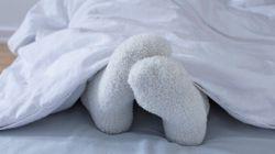 Groundbreaking Bedbug Bait