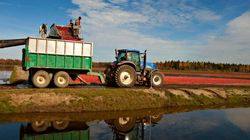 Quebec Farmers Sound Off On TFW