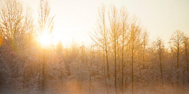 Sunrise on a crisp winter morning near Vancouver BC.