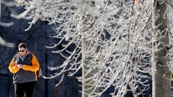 Winter's Parting Gift To Southern Ontario: An Ice