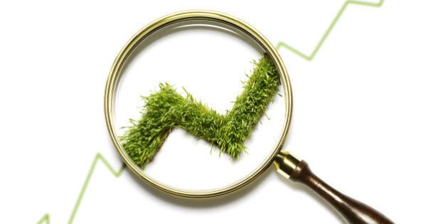 magnifying glass on grass stock