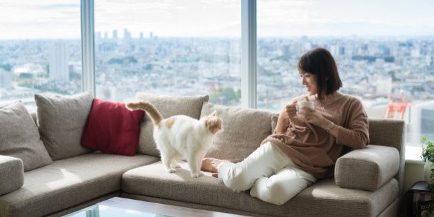 Japanese woman and cat in high-rise