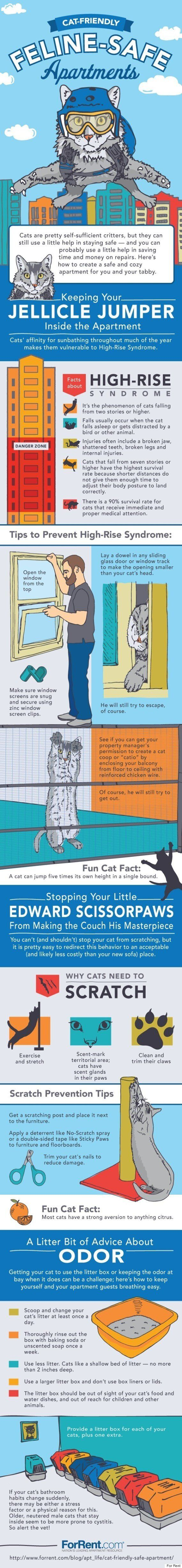 Clever Tips For A Cat-Friendly
