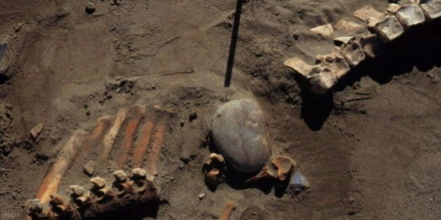 Ancient Bones And Stone Tools Shed Light On First