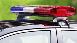 Alleged Dog Stabbing Leaves B.C. Man Dead, Police Under