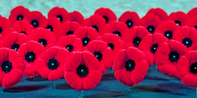 [UNVERIFIED CONTENT] The red poppy (Canadian Version) is a symbol of remembrance for all the men and women veterans who fought in war and conflict. The poppies are sitting on their pins, row on row.