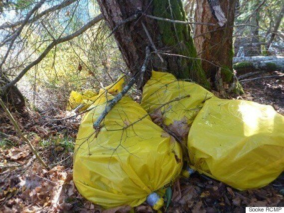 Sooke RCMP Investigating Illegal Asbestos Dumping On Beecher Bay First Nations
