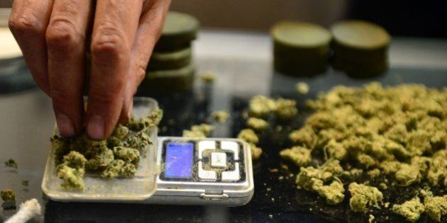A vendor weighs buds for card-carrying medical marijuana patients attending Los Angeles' first-ever cannabis...