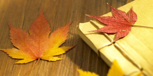a book and maple leaves