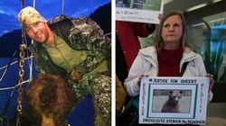 NHLer's Bear Hunt Trial Greeted By Protesters In