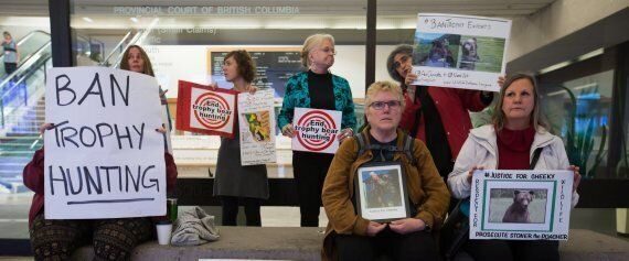 Clayton Stoner Bear Hunt Trial Triggers Protest In