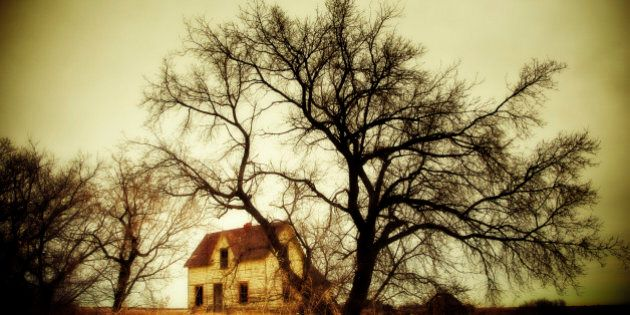 Spooky abandoned farm house overshadowed by large trees,