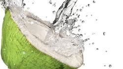 The Truth About Coconut Water's Health