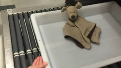 Pearson Airport Reunites Girl With Lost Teddy In Epic