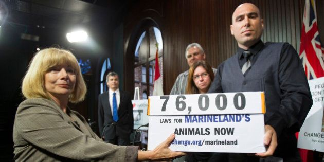 TORONTO, ON - SEPTEMBER 17: MPP Cheri DiNovo accepted boxes of petitions from Philip Demers, former Marineland...
