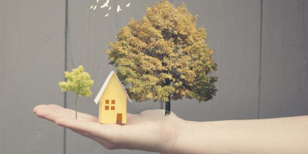 A tiny dream landscape with a yellow paper house on someone's hand. Next to the house there are two nice trees and some birds flying.