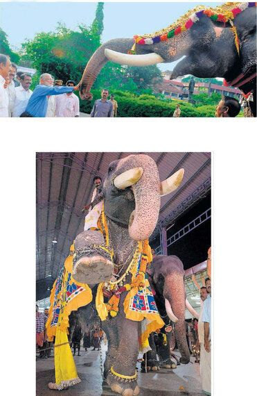 Hope for Kerala's Captive