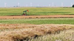 Saskatchewan Family Loses 3 Children In Farm