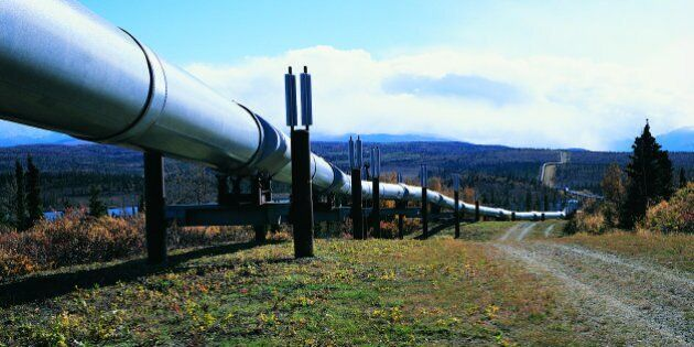 Alberta Pipeline Spills 60,000 Litres Of Crude Into Muskeg, Says Energy