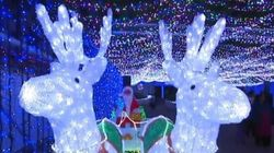 It Doesn't Get Much Prettier Than This Record-Setting Christmas Light