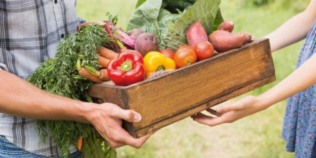 Farmer giving box of veg to customer on a sunny