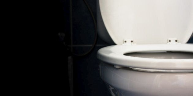 Deodorizing Toilet Seat Filters Out Smells,