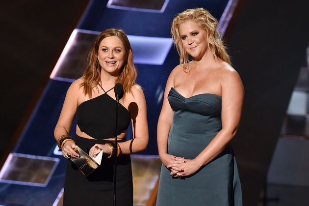 Amy Poehler: 16 Nominations, 0 Wins, Queen Of Our