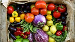 Study Says These Foods Can Help With