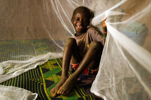 The End Of The Malaria Epidemic Is Within