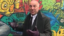 O'Leary Copies Rick Mercer To Call For Slashing CBC