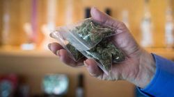 Surge In Marijuana Dispensaries Catches Cities By