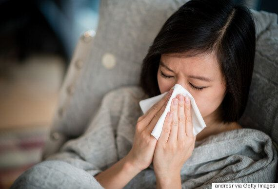 Allergy Facts: Eight Myths And Truths About