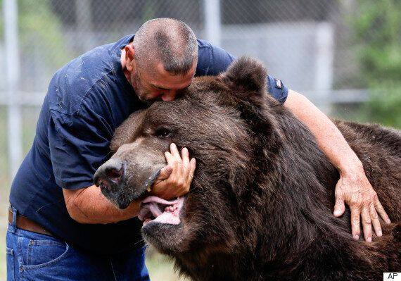 Jim Kowalczik, Wildlife Rescuer, Says Playing With Bears As Natural As Petting A
