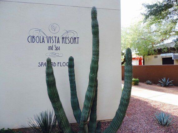 Our Adventures in Peoria, Arizona's Hidden