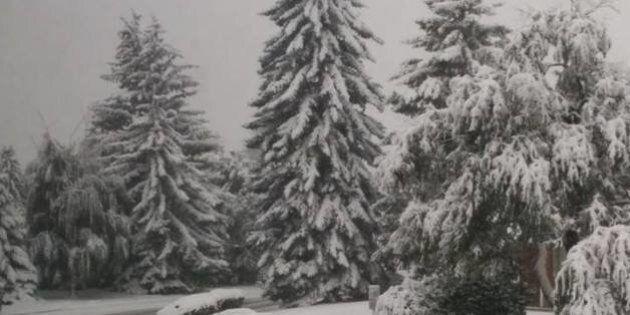 Calgary Snowstorm: Photos Of September Snowfall On Twitter,