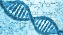 DNA May Be the Hard Drive of the