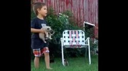 Kid Learns Firsthand How Herding Kittens Is An Adorable