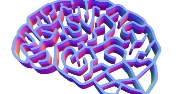 Brain complexity. Conceptual computer artwork of a brain represented as a complex maze. This could represent...