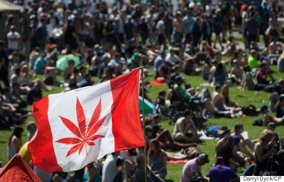 Canadian Marijuana Legalization Bill Coming In Spring 2017, Jane Philpott
