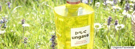 Ungava Gin Can Support Inuit Health If It Wants To Make Things Right: Corporate