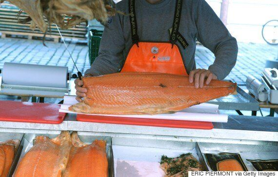 Atlantic Salmon Prices Going Up As Sea Lice Eats Up